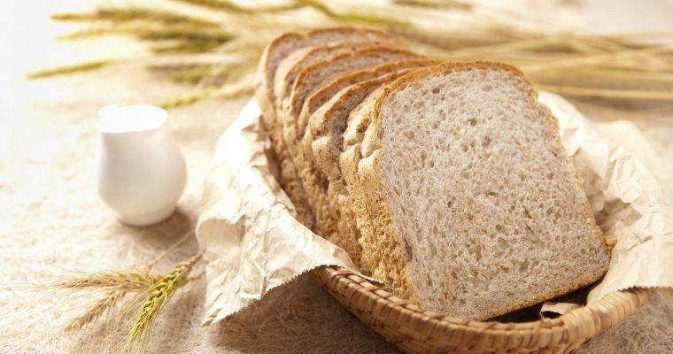 どうぶつ性不使用・食パン